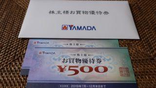 ヤマダ電機 9831